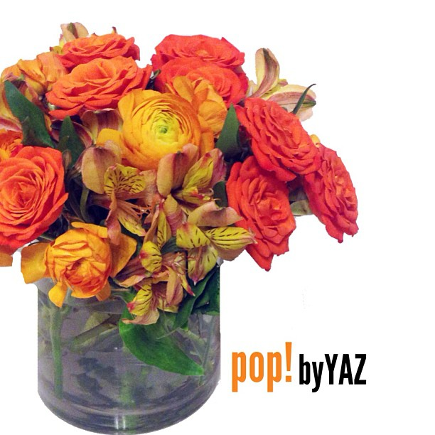pop blooms orange