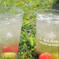 YUM! St. Germaine Cocktails