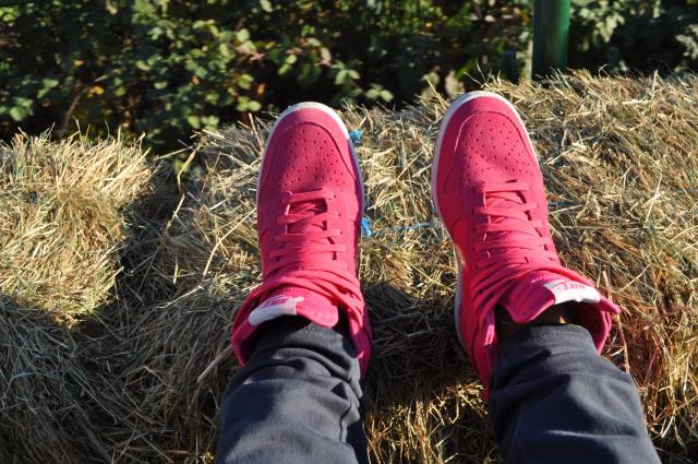 Nike Dunk Sky Hi Pink Suede