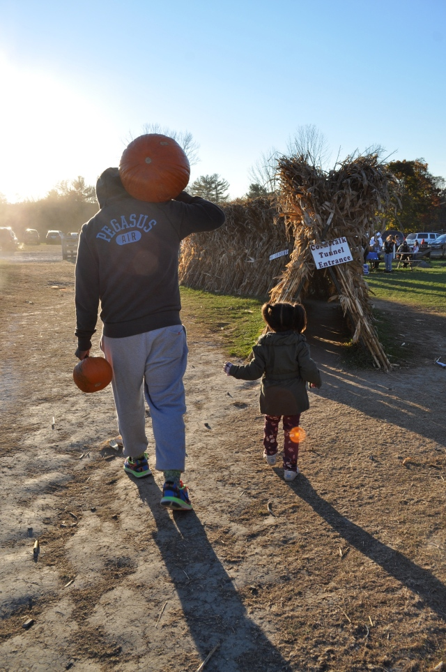 sunset pumpkin walk